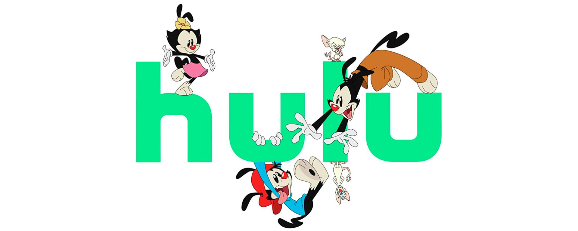 Hulu Animaniacs Header