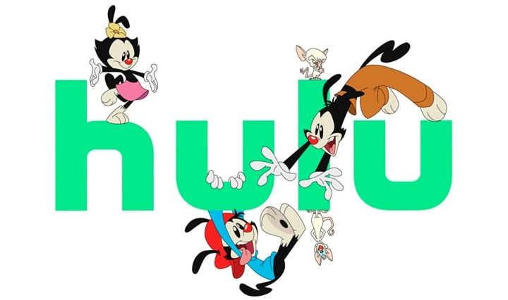 Hulu Animaniacs Header